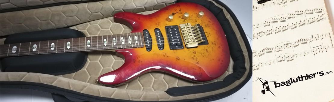 Fundas Guitarra Eléctrica